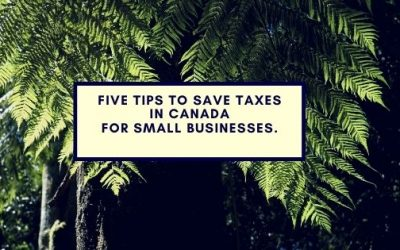 Five tips to save taxes in Canada for small businesses